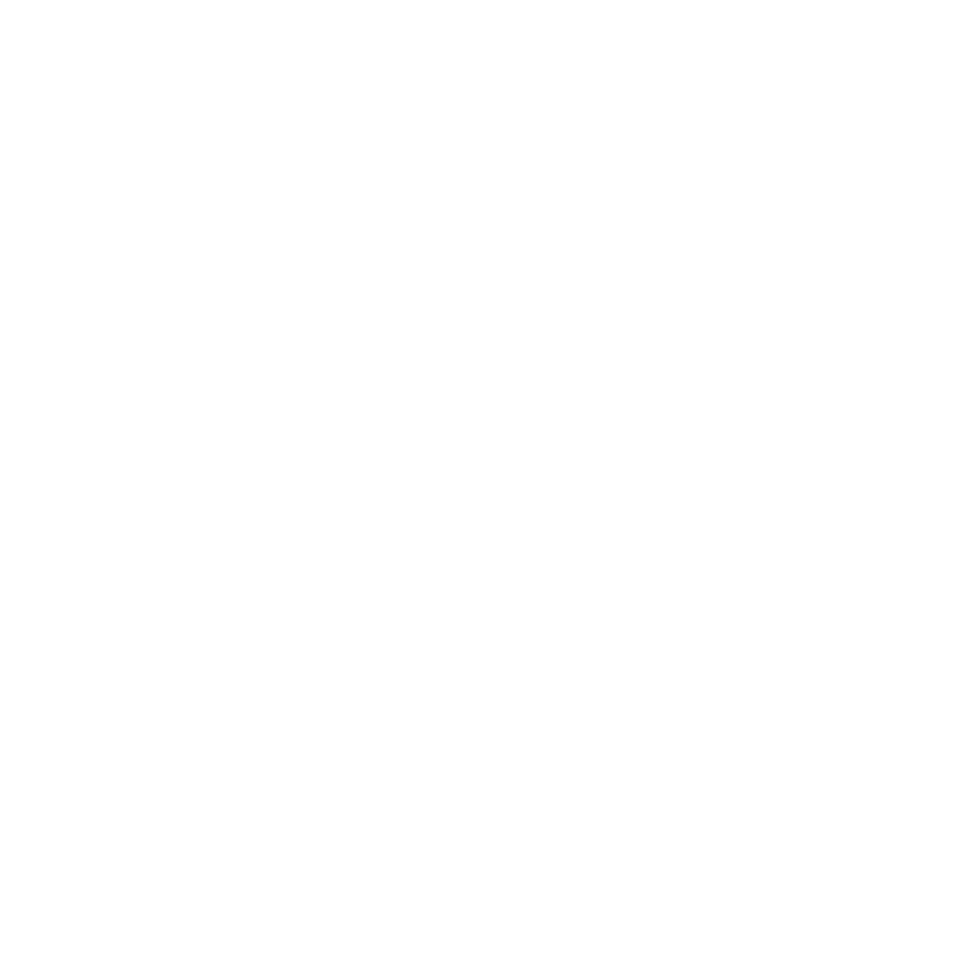 CIFF - CAIRO INTERNATIONAL FILM FESTIVAL OFFICIAL SELECTION 2019